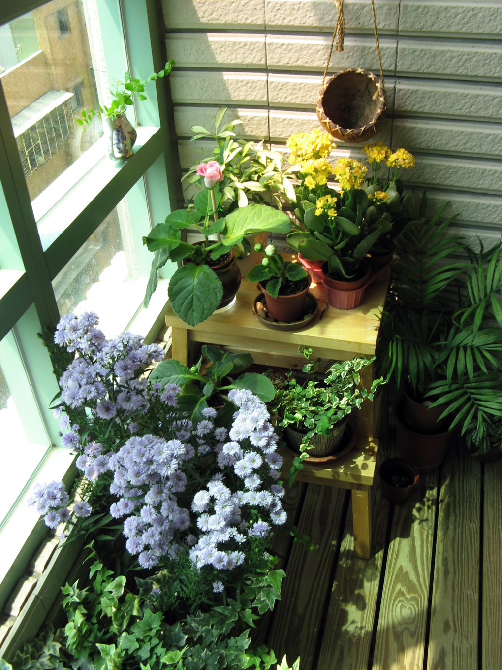 5 indoor garden ideas perfect for tiny spaces for Garden design reddit