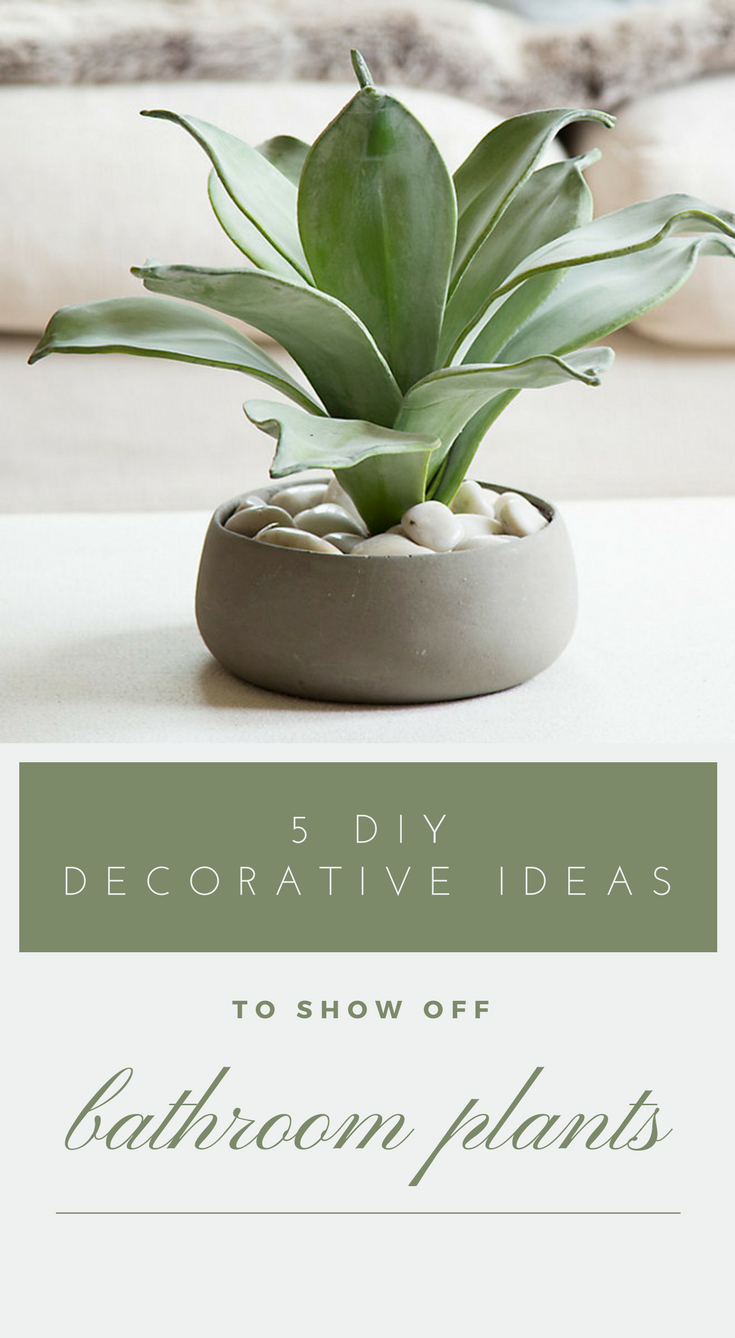 5 DIY Decorative Ideas To Show Off Bathroom Plants