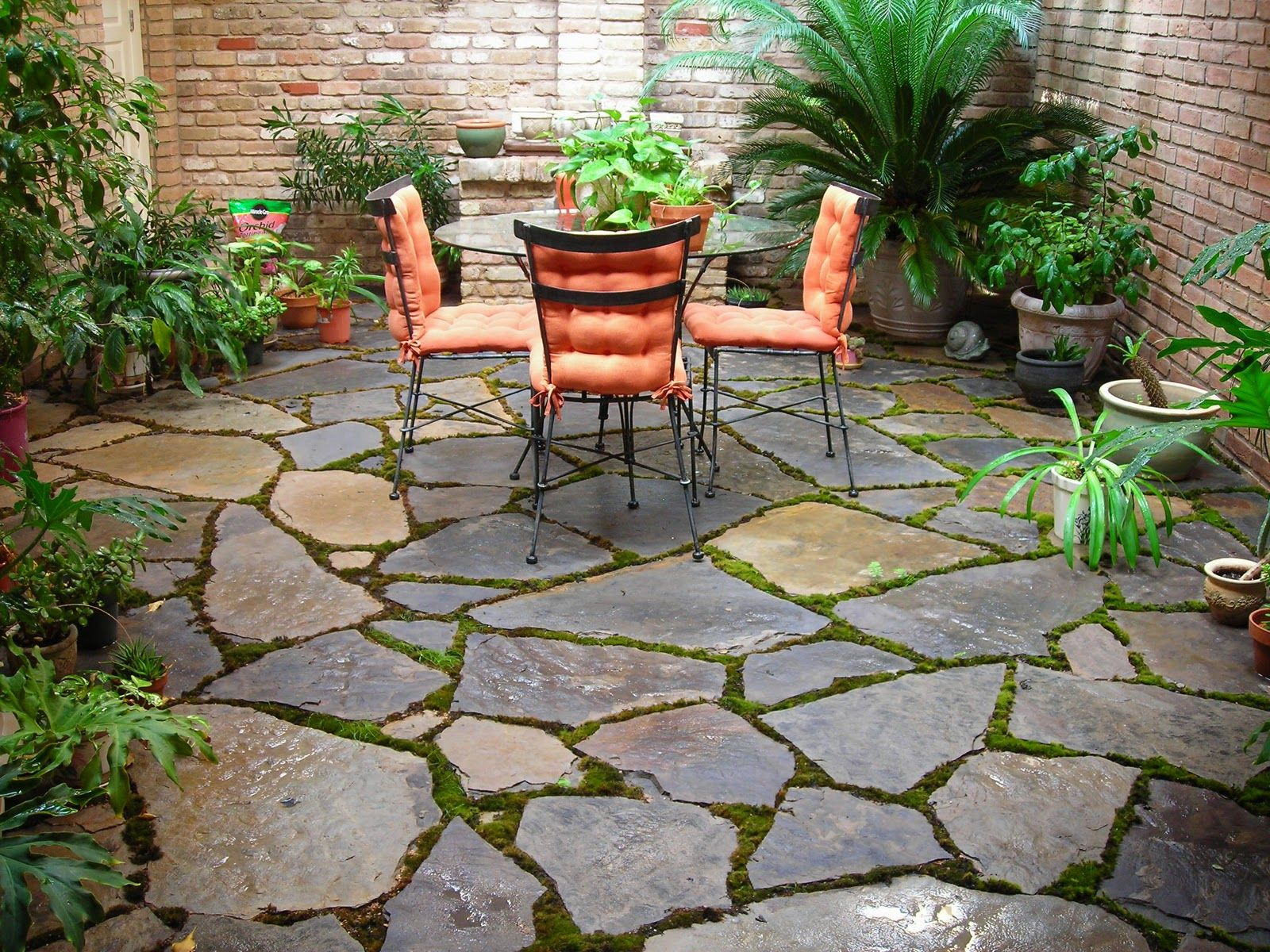 7 Budget Friendly Rock Garden Ideas For Small Spaces